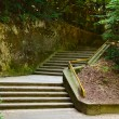 Stock Photo: Stairs through forest
