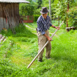 Old rural man using scythe — Stock Photo #5859692