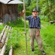 Old rural man using scythe — Stock Photo #5859701