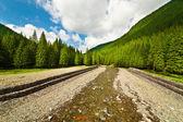 Fonte do Rio Lotru nas montanhas da Roménia — Fotografia Stock