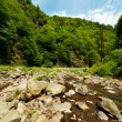 Latoritei Valley in Romania mountains — Stock Photo #5955401