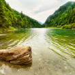 Petrimanu Lake in Romania - Stock Photo