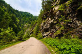 Latoritei Valley in Romania — Stock Photo