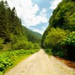 Latoritei Valley in Romania — Stock Photo
