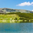 Royalty-Free Stock Photo: Glacial Lake Calcescu in Parang mountains, Romania