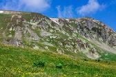 Landscape with Iezer peak of Parang mountains in Romania — Stockfoto
