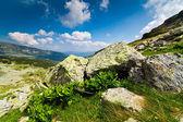 Near Setea Mare peak in Parang mountains, Romania — Stock Photo
