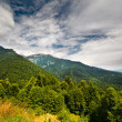 Stock Photo: Landscape with mountains in Romania