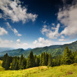 Landscape with mountains in Romania — Stock Photo #6316420