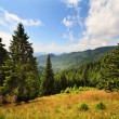Landscape with mountains in Romania — Stock Photo #6316423
