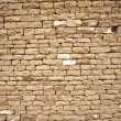 Brick wall — Stock Photo #6412341