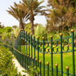 Fence with garden — Stock Photo