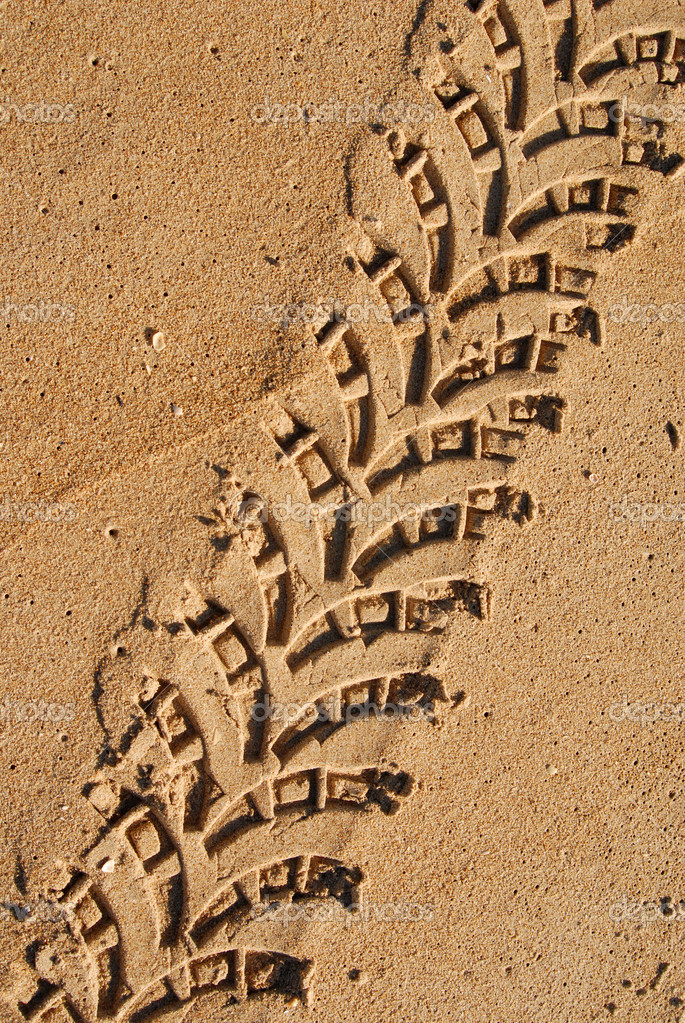 Close up of a trace of a 4 x 4 in the sand  — Stock Photo #6387904
