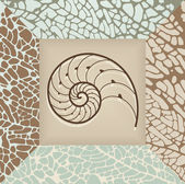Nautilus shell background. — Stock Vector