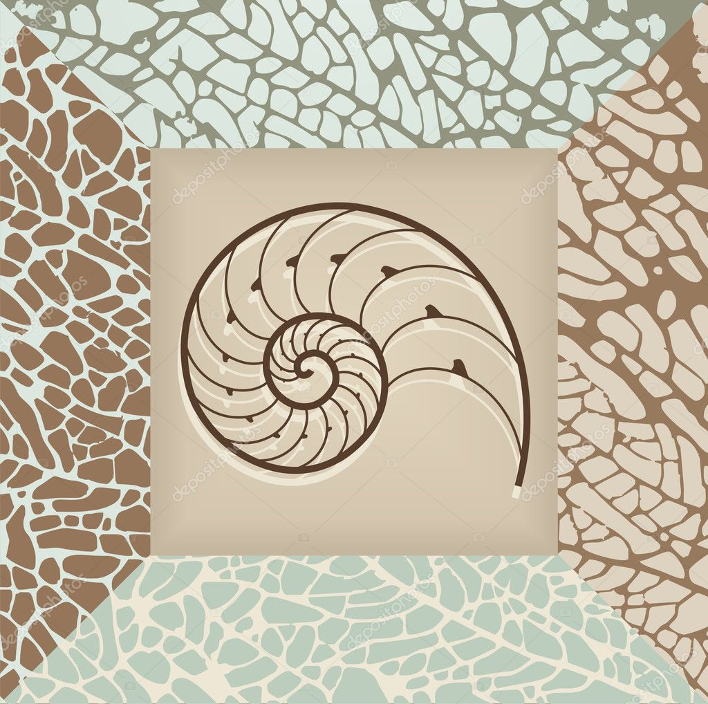 Nautilus shell illustration on brown and beige backgroundVector available. — Stock Vector #6664687
