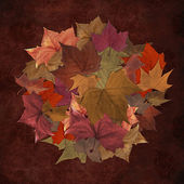 Autumn leaves circle background — Stock Photo