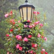 Stock Photo: Lamp post with pink roses