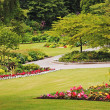 Stock Photo: Park garden landscape