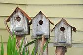 Three birdhouses — Stock Photo