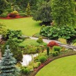 Stock Photo: Lush botanical garden