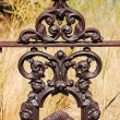Ornamental ironworks — Stock Photo