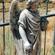 Angel headstone in cemetery — Stock Photo
