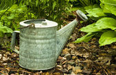 Vintage watering can — Stock Photo