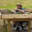 Disabled gardener — Stock Photo