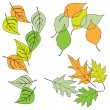 Stock Vector: Leaf, collection for designers