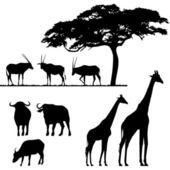 非洲的动物,矢量剪影 — 图库矢量图片