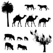 African animals, vector silhouettes — Stock Vector