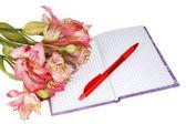 Taccuino con una penna e fiori — Foto Stock