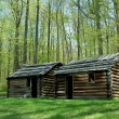 Stock Photo: Revolutionary War troop cabins