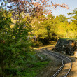 Forest railway — Stock Photo