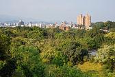緑の都市景観 — ストック写真