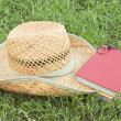 Straw hat with a book — Stock Photo