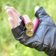 Stock Photo: Two rounds on hand hunter
