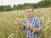 The farmer in the field — Stock Photo