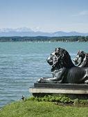 Lions at lake Starnberg — Stock Photo
