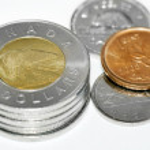 Canadian polar bear coins — Stock Photo