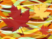 Maple leaves fall seamless pattern — Stock Vector