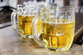 Cold beers in glass bocks — Stock Photo
