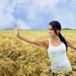 Tai chi in the field — Stock Photo