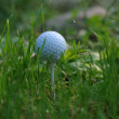 Photo: White golf ball