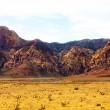 Red Rock Mountains Rising from Golden Desert Floor — Stock Photo