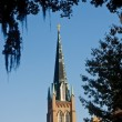 Stock Photo: Steeple Through Trees and Spanish Moss