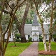 Old White Church Under Spanish Moss — Stock Photo