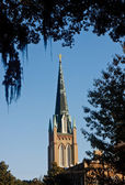 Steeple Through Trees and Spanish Moss — Stock Photo