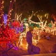Many Festive and Colorful Christmas Lights in a Nighttime Garden — Stock Photo
