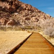 Stock Photo: Board Walking Trail Through Desert Toward Mountains